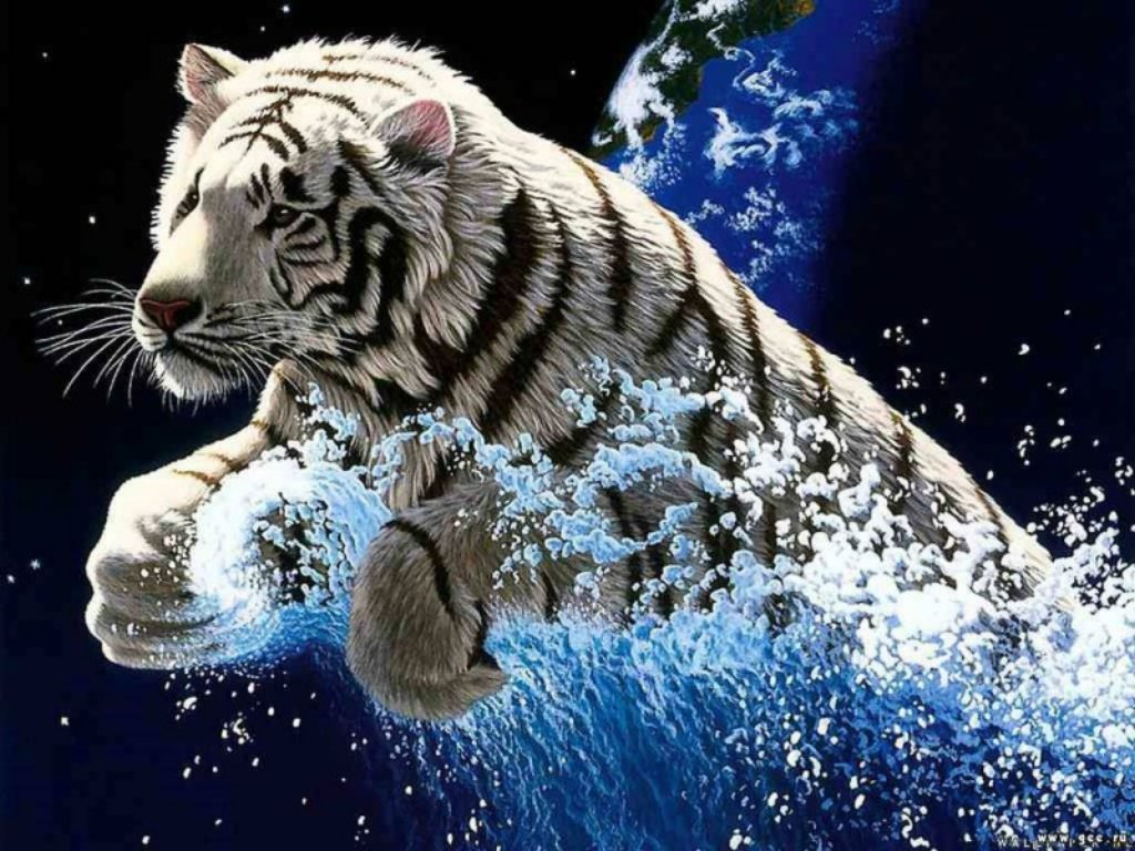 Animals Beasts 067